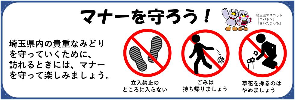 マナーを守ろう! 埼玉県内の貴重なみどりは、いろいろな人の努力で維持されています。 みどりをみんなで守るために、マナーを守って楽しみましょう。 ・立入禁止のところに入らない ・ごみは持ち帰りましょう ・草花を採るのはやめましょう